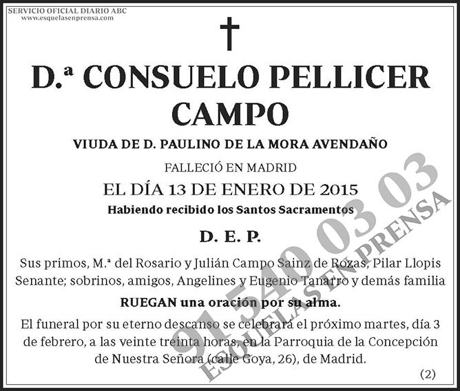 Consuelo Pellicer Campo